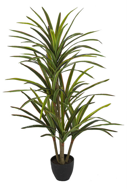 P-184200 4.5' Soft Touch Dracaena Marginata Plant Green with Red Edge