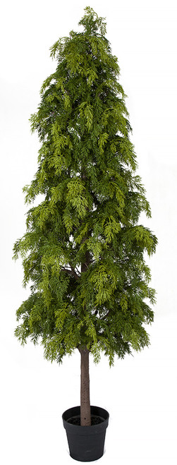 6' Potted Hinoki Cypress Shrub Synthetic Trunk