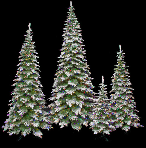 Flocked Sitka Spruce Trees with Multi-Colored Lights