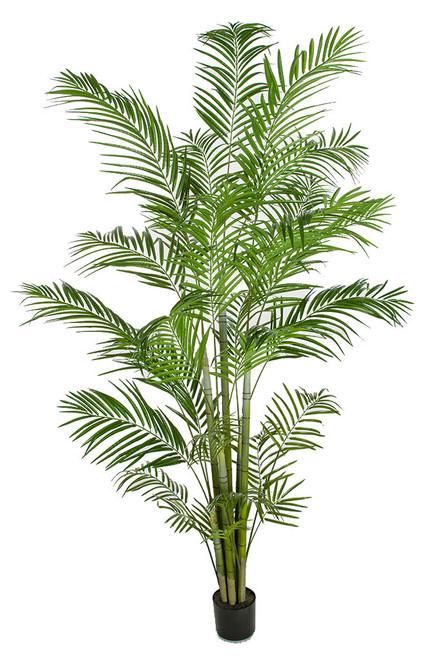 P-180270 8' Areca Palm Tree