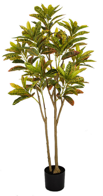 4.5' Croton Plant in Weighted Base Synthetic Trunks