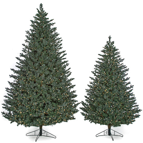 12' and 9' Abington Blue Spruce Trees with LED Lights