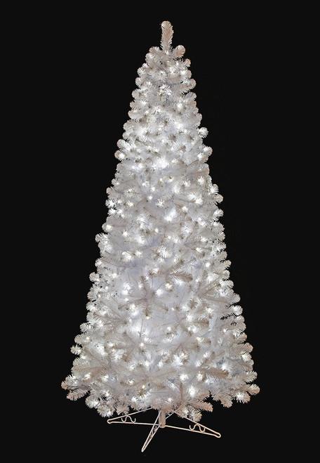 Slim Size Snowy White Spruce Trees