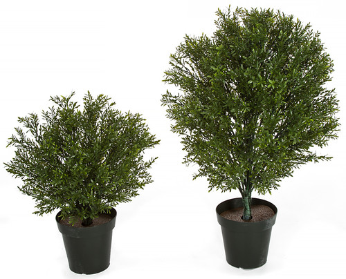 "Limited UV Resistance 36"" or 24"" Rosemary Shrub"