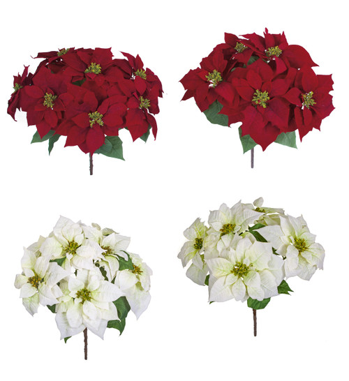 "21"" or 24""  Red or White Poinsettia Bushes"