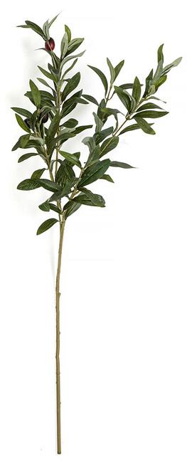 "PR-190702 29"" IFR Olive Branch with Olives"