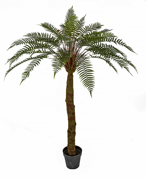 68 Inch Potted Fern Tree with Synthetic Trunk