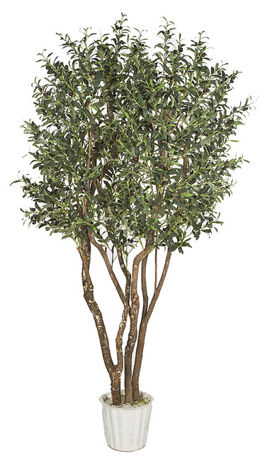 7' Olive Tree on Natural Wood Trunk with Olives