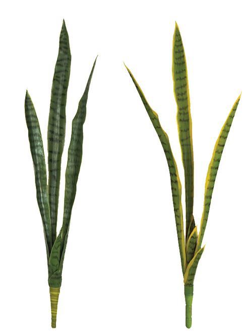 "37"" Sanservieria Plants - Tutone Green or Green/Yellow"