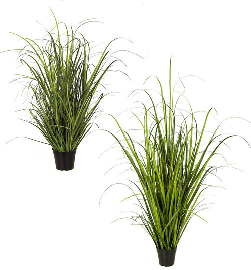 "32"" or 52"" Wild Onion Grass"
