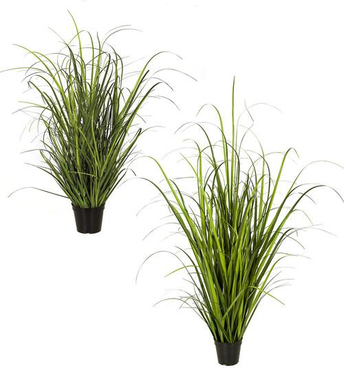 """32"""" or 52"""" Wild Onion Grass"""