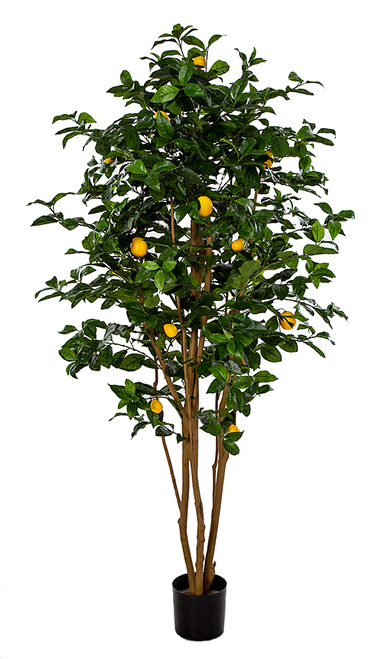 show original title Details about  /Artificial Lemon Tree with 3 Lemon Height 55cm Planting Pot Plant Table Decoration