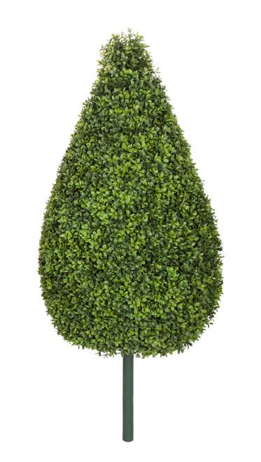 "36"" English Boxwood Teardrop"