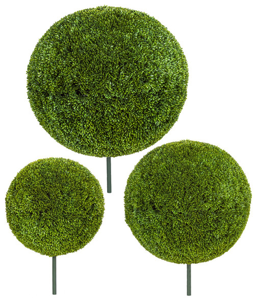 """42"""", 30"""" or 24""""  Japanese Boxwood  Ball Topiaries"""