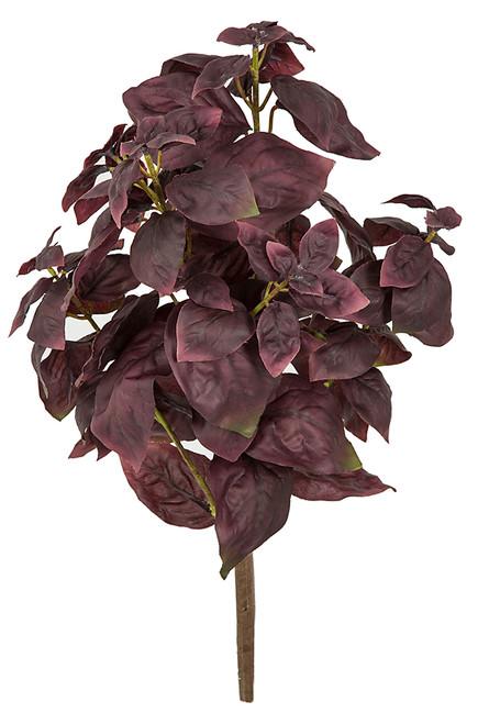 "A-201130, 15"" Basil Plant"