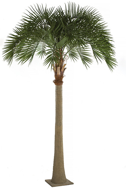 "A-196220   17"" Royal Palm Tree"