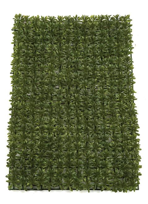 "24"" Length x 16"" Width Podocarpus Mat"