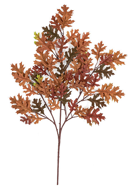 "38"" Pin Oak Branch in Rust/Green"