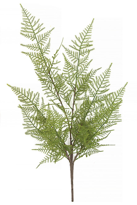 "25"" Bracken Fern Spray"