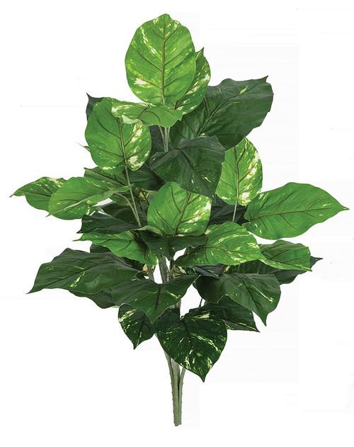 "36"" FireSafe Pothos Bush Variegated Green"