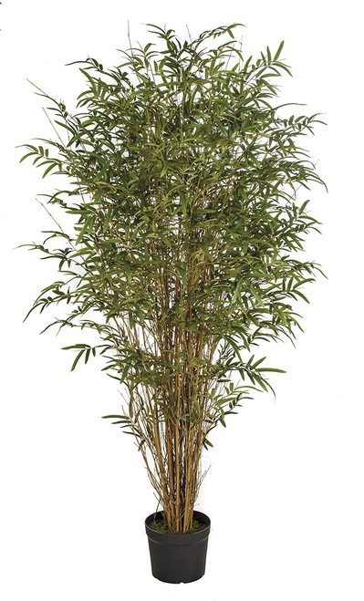 6' (Deluxe) Bamboo Palm Tree with Natural Twig and Canes