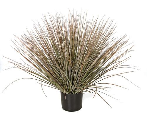 """A-160185  30"""" Ht x 38"""" Width  Dry Green Onion Grass"""
