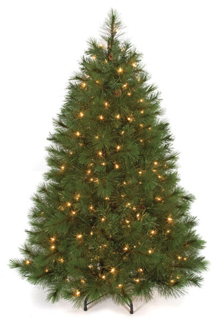 C-914114.5' Arolla Pine Treewith Clear Lights