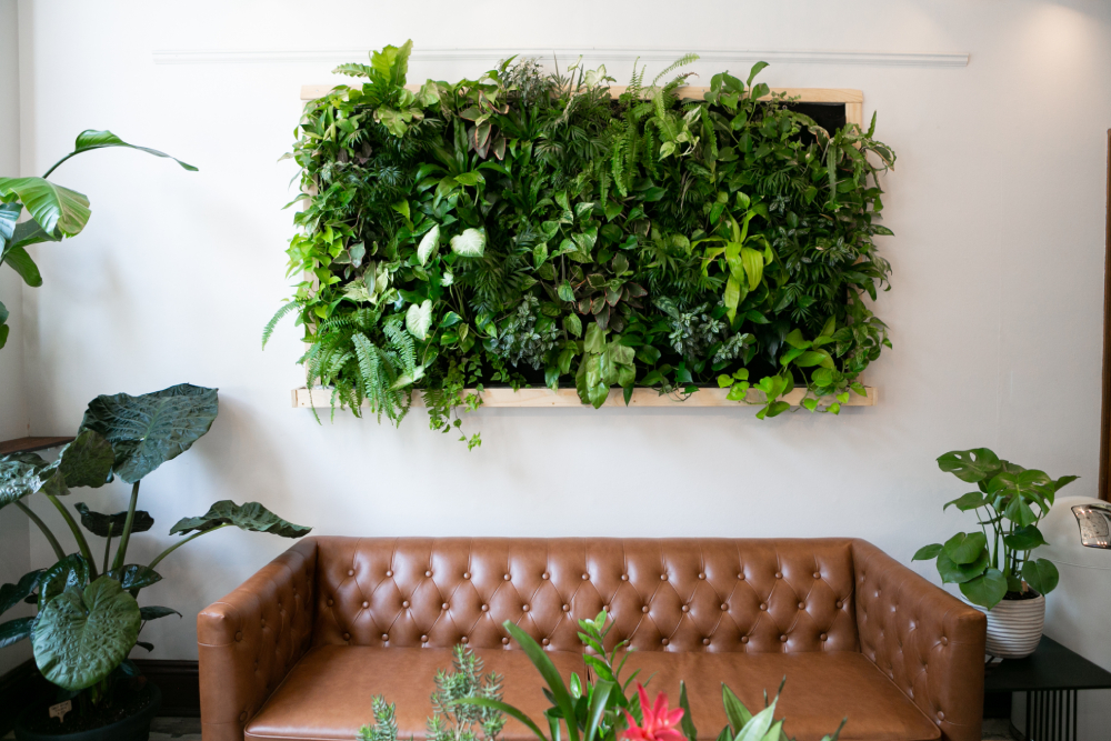 8 Benefits of Decorating Your Space with Artificial Plants