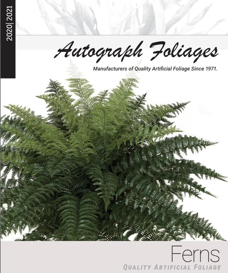 ferns-catalog-.jpg