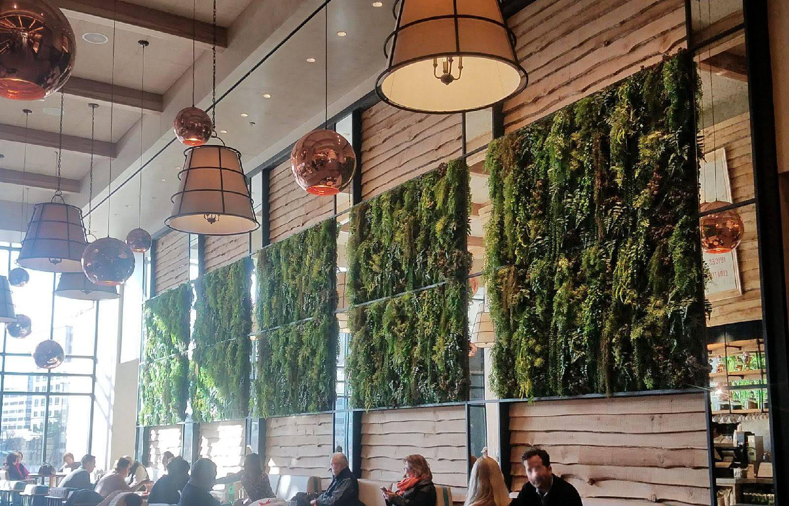 Importance of Moss In Commercial Spaces