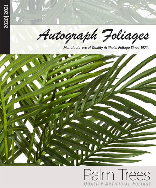 palms-cover1.jpg