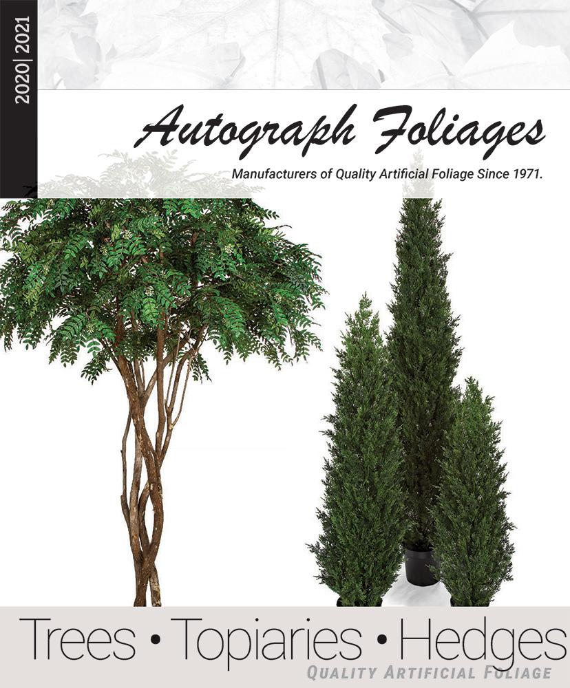 trees-tops-hedges.jpg