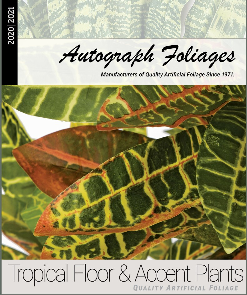 tropical-floor-and-accent-plants-catalog.jpg