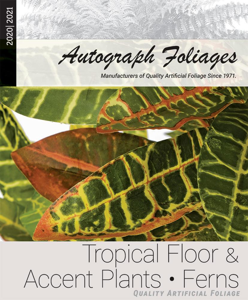 tropical-floor-ferns.jpg
