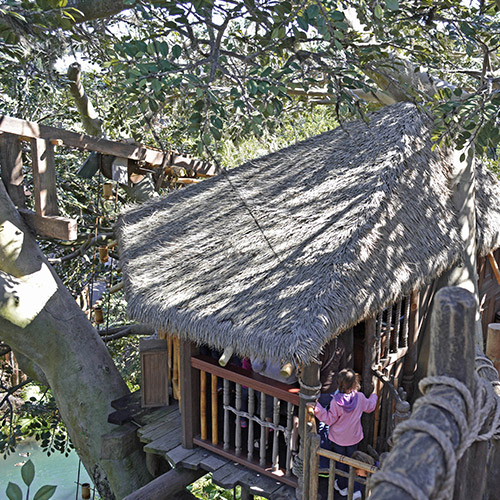 Swiss family Treehouse roof photo