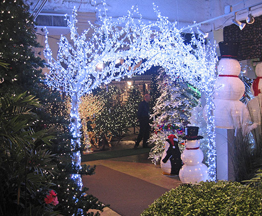 Holiday/Event Lighting
