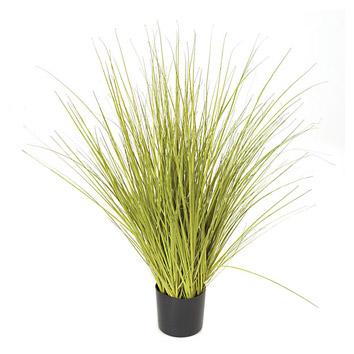 Big green grass in a mat image