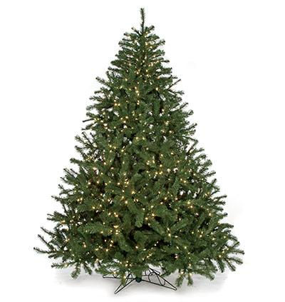 Full Size Tree Width