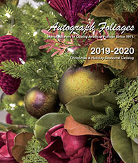 Catalog Christmas photo