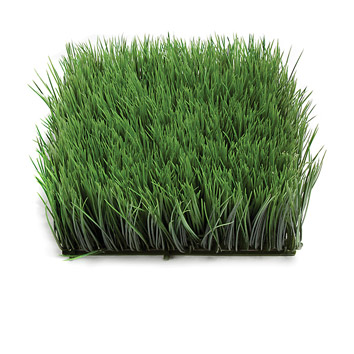 A squared shaped tile filled by grass.