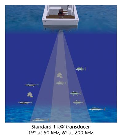 Sonar - Using sound to identify fish types