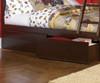 Columbia Full over Full Bunk Bed Antique Walnut | Atlantic Furniture | ATLCOL-FF-AW