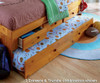 Honey Twin Size Bookcase Captain's Day Bed with Trundle | 25073 | DWF2122-3DRTR