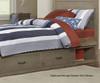 Everglades Alex Panel Bed Twin Size Driftwood   NE Kids Furniture   NE10020
