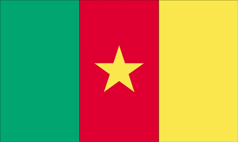 Cameroon - 3'x5' Light Weight Polyester Flag