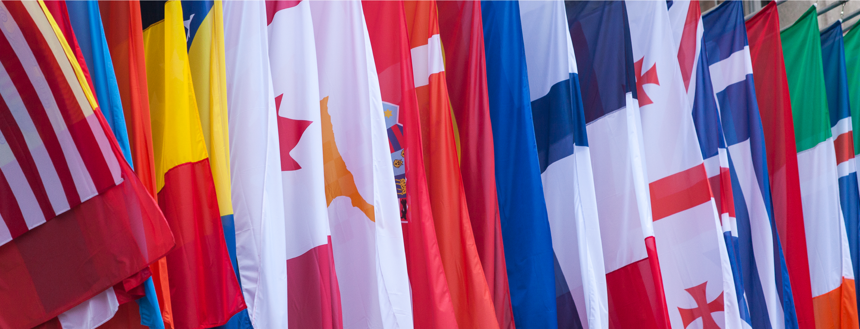 International Flags and Country Flags
