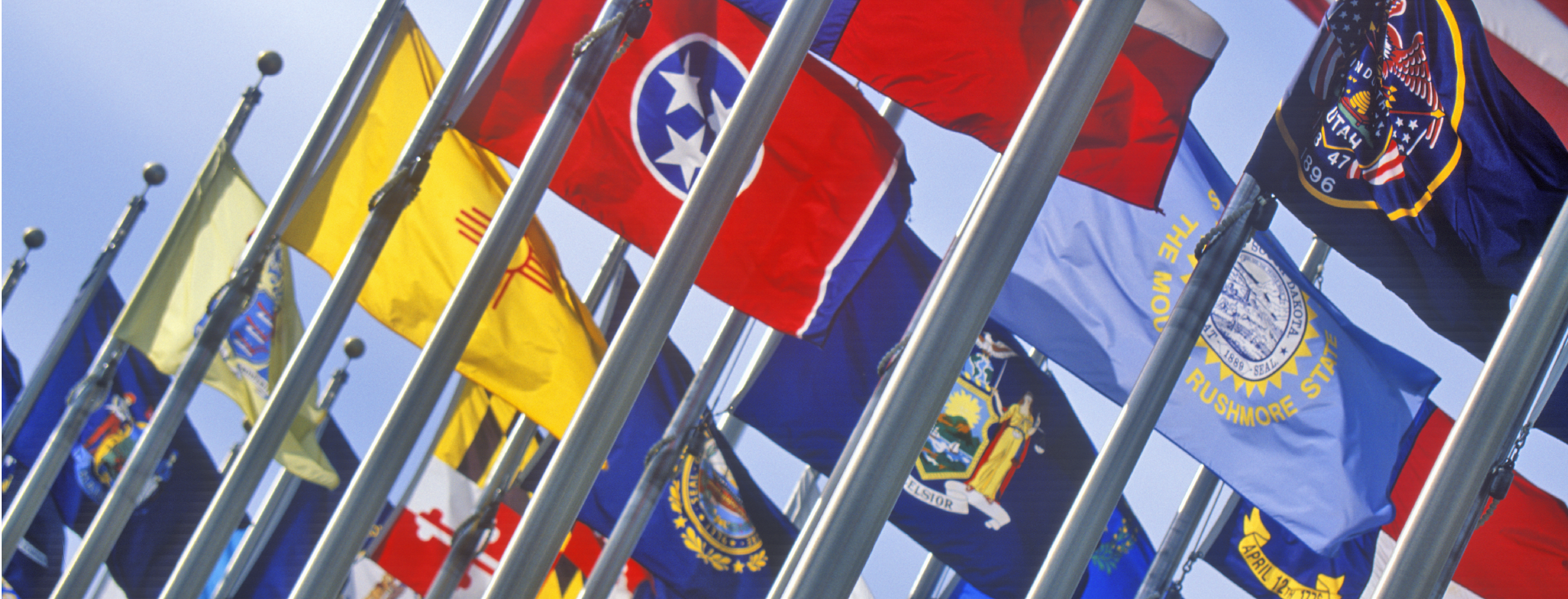 U.S. State and Territorial 3x5 Flags
