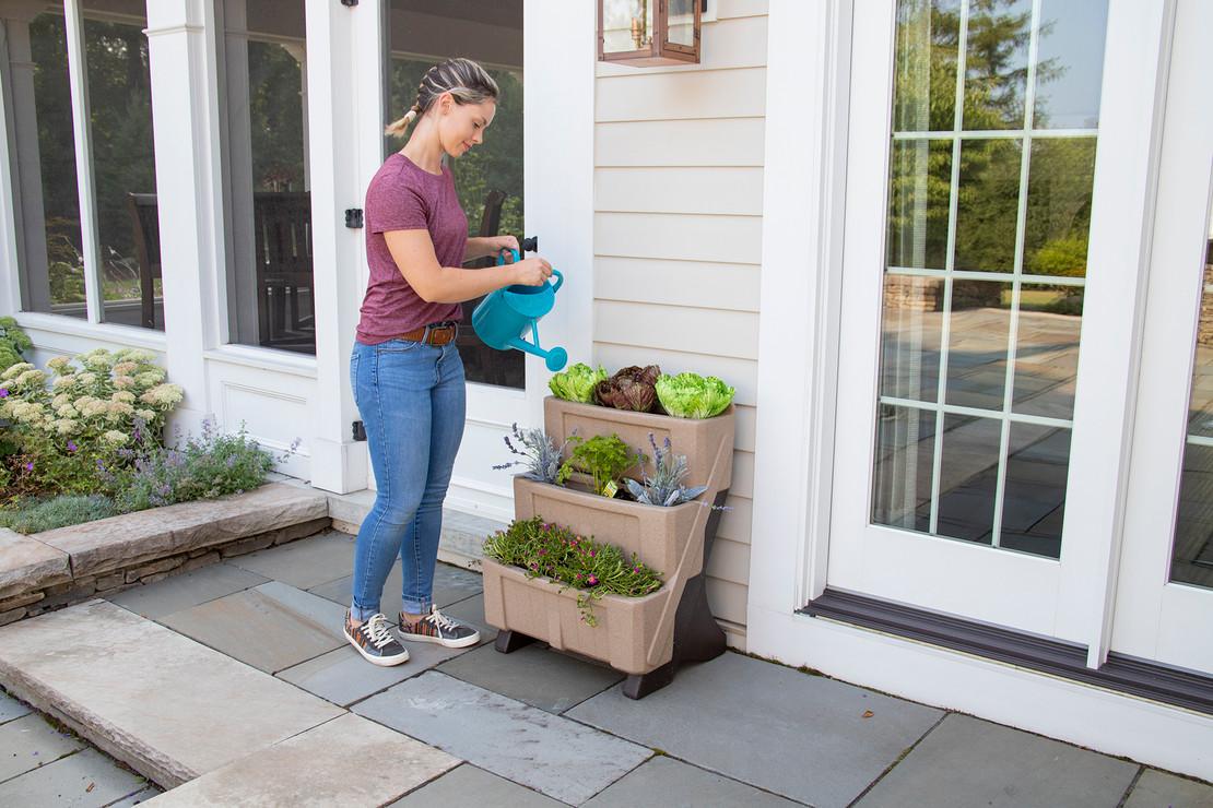 5 Tips to Start Your Pollinator Garden