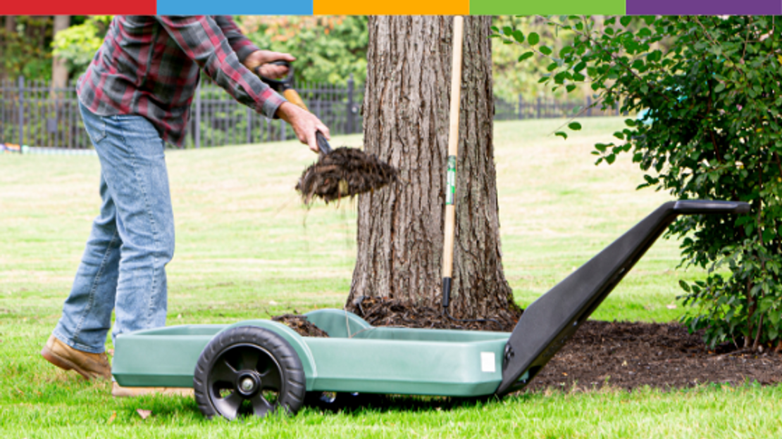Top 5 Tips to Get your Garden Ready for Fall!