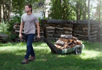 Simplay3 Easy Haul Flat Bed Cart is convenient for hauling firewood.